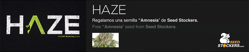 Haze promo seed stockers weed 420